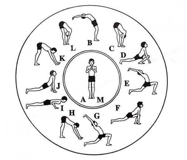 sun salutation diagram