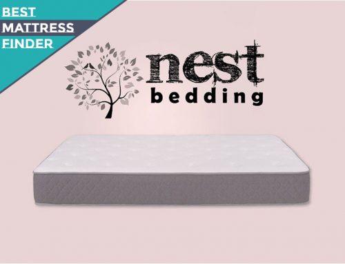 Nest Bedding Mattress Brand Review